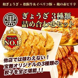 累計1億個販売 全国百貨店で日本一売れた餃子セット 生冷凍ぎ...