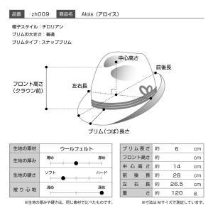 帽子/高級チロリアンハット/Zapf(ツァップ)/Alois(アロイス)オーストリア製フェルトハット/メンズ・レディース|homeroortega|10