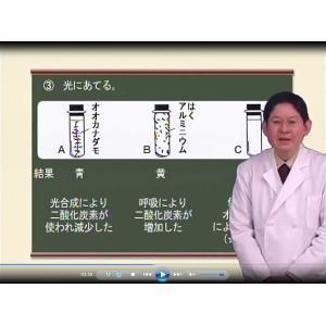 不登校ならIT塾ホームスクールのWeb授業 中学1年or 2...