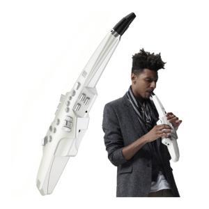 ◆管楽器の新しい世界を広げるデジタル楽器、エアロフォン◆  サックスをベースに、さまざまな音色をこの...