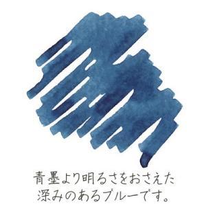 (メール便可:10点まで)セーラー万年筆 (カートリッジインク) 万年筆用カートリッジインク 蒼墨 12本入り/顔料 (13-0604-144)|homeshop|02
