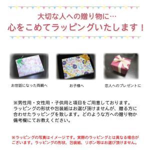 有料ラッピング(包装紙の色の指定はできません)(メール便不可)|homeshop|02