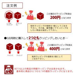 有料ラッピング(包装紙の色の指定はできません)(メール便不可)|homeshop|03