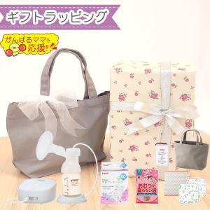 【ラッピング済セット】ピジョン さく乳器 母乳アシスト 電動Pro Personal R& 専用 充...