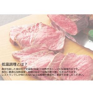 (限定10台!両手鍋付)貝印 低温調理器 Kai House AIO Sousvide Machine DK-5129 (メール便不可)|homeshop|03