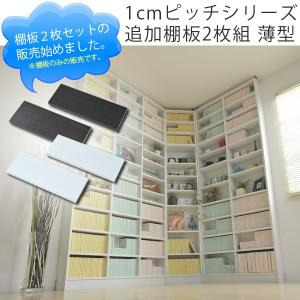 1cmピッチシリーズ 追加棚板2枚組 薄型 homestyle