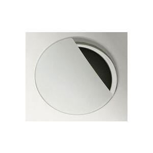 パナソニック シンク 排水口 クリアS排水プレート ホワイト SE39SZBW11 Panasonic|hometec