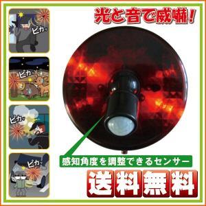 人感センサー LED回転灯 スーパーパトピカ SLR100 リーベックス 送料無料|hometec