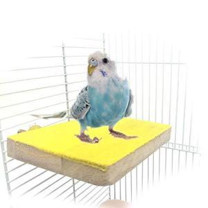 Kingsie オウム 鳥用パーチ 止まり木 爪とぎパーチ 爪を磨く 自然木 止まり台 インコ ハムスター ケージアクセサリー ランダム色 (2A) homeyayafutenn