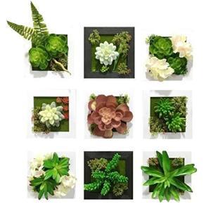 MedianField 【 ウォールグリーン 9個 セット 】 フェイクグリーン 観葉植物 造花 壁掛け 人工観葉植物 エアープランツ 室内 屋外 フ homeyayafutenn