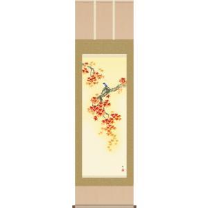 掛け軸 掛軸-紅葉に小鳥/浮田 秋水[尺五 桐箱 風鎮 和室 床の間 花鳥画 かけじく モダン インテリア 壁掛け 安い 贈物 ギフト 日常 年中 飾る] honakote
