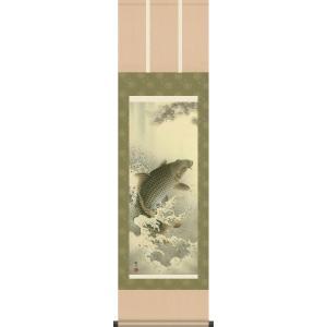 掛け軸-大昇鯉/森山 観月[尺三 化粧箱 風鎮 和室 床の間 節句画 端午 五月 こどもの日 男の子 モダン オシャレ 壁掛け 安い 贈物 ギフト 飾り]|honakote