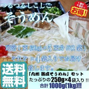 そうめん 素麺 お取り寄せ 熟成そうめん250g×4袋セット たっぷり1キロ入り つるつる食感 人気涼麺 お好みのめんつゆで 保存食お試しグルメ honba-kyusyu