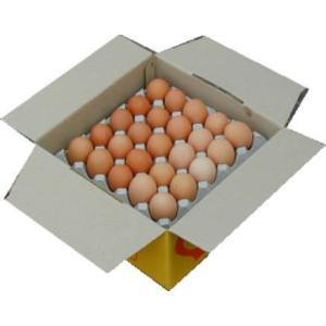 卵 たまご 玉子 (送料無料)美野里たまご加賀の朝日25コトレイ箱詰め|hondanojo