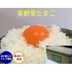 卵 たまご 玉子 (送料無料)美野里 たまご 加賀の朝日 80コ トレイ箱詰め|hondanojo