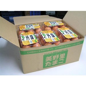 卵 たまご 玉子 (送料無料)美野里たまご 加賀の朝日 6コ入10パック箱入り|hondanojo