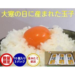 卵 たまご 玉子 美野里たまご 加賀の朝日 10コ3パック 箱入り クール 送料無料|hondanojo