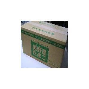 卵 たまご 玉子 「送料無料」美野里たまご加賀の朝日10コ12P箱入り|hondanojo