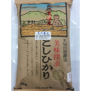 お米29年産 自然農法米こしひかり「天の恵み」食用玄米5kg|hondanojo