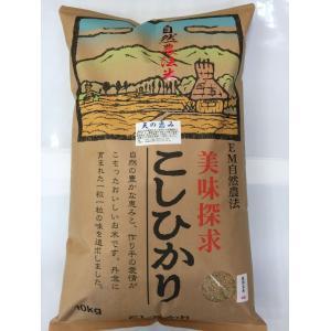 お米29年産 自然農法米こしひかり「天の恵み」食用玄米10kg|hondanojo