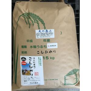 お米29年産 自然農法米こしひかり「天の恵み」食用玄米15kg|hondanojo