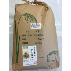 お米29年産  自然農法米こしひかり「天の恵み」白米20kg|hondanojo