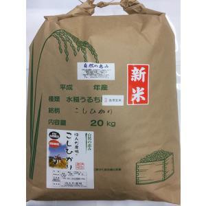 29年産自然農法米こしひかり「天の恵み」食用玄米20kg|hondanojo