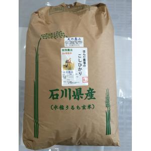 29年産  自然農法米こしひかり「天の恵み」白米30kg|hondanojo