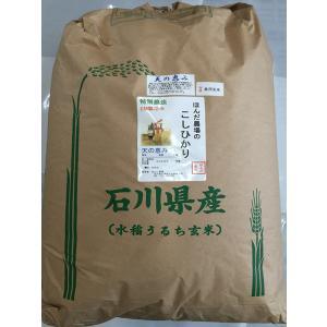 お米29年産  自然農法米こしひかり「天の恵み」食用玄米30kg|hondanojo