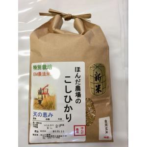 お米29年産  自然農法米こしひかり「天の恵み」食用玄米2kg|hondanojo