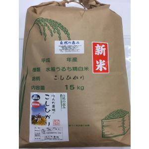 自然農法米 お米 こしひかり 特別栽培米 29年産  「自然の恵み」 食用 玄米 15kg|hondanojo