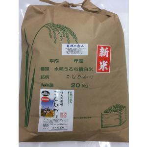 自然農法米 お米 こしひかり 特別栽培米 30年産  「自然の恵み」 白米 20kg 加賀百万石|hondanojo