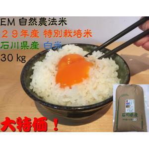 自然農法米 お米 こしひかり 特別栽培米 29年産  「自然の恵み」 白米 30kg 加賀百万石|hondanojo