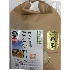 自然農法米 お米 こしひかり 特別栽培米 29年産  「自然の恵み」 白米 2kg お試し版 (初回送料無料)|hondanojo