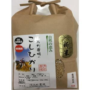 自然農法米 お米 こしひかり 特別栽培米 30年産  「自然の恵み」 食用 玄米 2kg お試し版 (初回送料無料) 加賀百万石|hondanojo