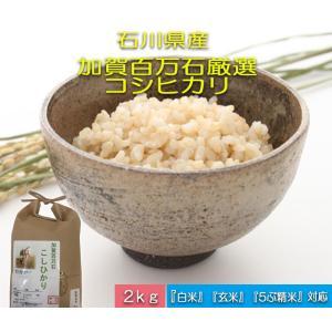 加賀百万石 お米 こしひかり 厳選コシヒカリ 平成29年産 石川県産 新米  食用 玄米 2kg|hondanojo