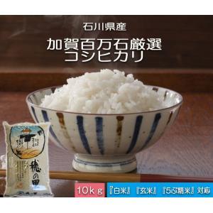加賀百万石 お米 こしひかり 厳選コシヒカリ 平成30年産 石川県産   白米 10kg|hondanojo
