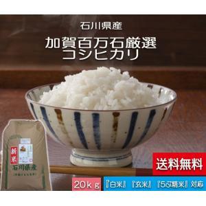 加賀百万石 お米 こしひかり 厳選コシヒカリ 平成30年産 石川県産   白米 20kg|hondanojo