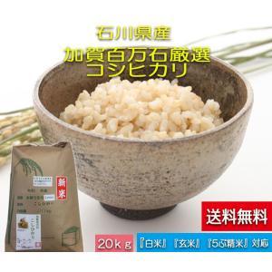 加賀百万石 お米 こしひかり 厳選コシヒカリ 平成29年産 石川県産 新米  食用 玄米 20kg|hondanojo