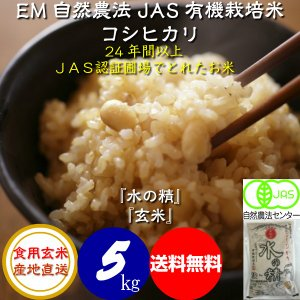 平成29年産 新米 無農薬 有機米 自然農法 JAS認定 コシヒカリ 「水の精」 食用玄米 5kg|hondanojo