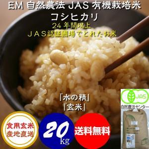 平成29年産 新米  無農薬 有機米 自然農法 JAS認定 こしひかり 「水の精」 食用 玄米 20kg|hondanojo