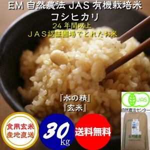平成29年産 新米 無農薬 有機米 自然農法 JAS認定 こしひかり 「水の精」 食用 玄米 30kg|hondanojo