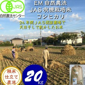 令和3年産 新米 無農薬  有機米 天日干し こしひかり食用玄米 20kg  天地の誉  EM 農法 JAS  オーガニックお米 hondanojo