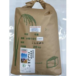 無農薬 お米 有機米 コシヒカリ 自然農法 29年産 新米 石川県産 辻本さんの有機栽培米 コシヒカリ 食用 玄米 20kg|hondanojo