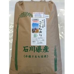 無農薬 お米 有機米 コシヒカリ 自然農法 29年産 新米 石川県産 辻本さんの有機栽培米 コシヒカリ 食用 玄米 30kg|hondanojo