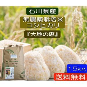 無農薬 お米  自然農法 栽培米 こしひかり 平成29年産  「大地の恵」 白米 15kg|hondanojo