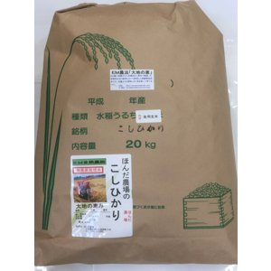 無農薬 お米  自然農法 栽培米 こしひかり 平成29年産   「大地の恵」 食用 玄米 15kg|hondanojo