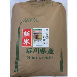 無農薬 お米  自然農法 栽培米 こしひかり 平成29年産  「大地の恵」 食用 玄米 30kg|hondanojo