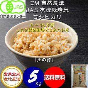 無農薬 お米 自然農法 有機米 JAS認定 コシヒカリ 平成29年産  食用玄米 5kg JAS認定 [土の詩]|hondanojo