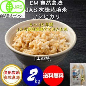 無農薬 有機米 JAS認定 コシヒカリ 平成30年産  食用玄米 2kg お試し版 JAS認定 [土の詩] (初回限り送料無料)お米 自然農法|hondanojo